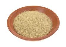Fermento seco ativo orgânico no prato Imagens de Stock