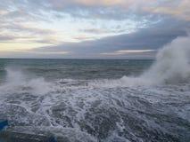 fermentować morze Zdjęcia Royalty Free