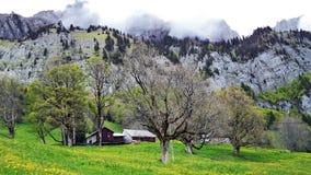 Fermes de bétail alpines et architecture traditionnelle sur les pentes du sud de la gamme de montagne de Churfirsten photographie stock