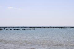 Fermes de mer d'huître dans les Frances images stock