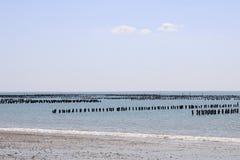 Fermes de mer d'huître dans les Frances photo stock