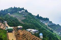 Fermes de thé sur une montagne Photos libres de droits
