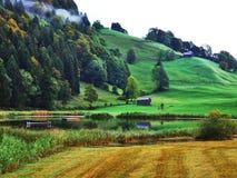 Fermes rurales et l'architecture traditionnelle de Wildhaus dans Thur River Valley images libres de droits