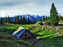 Fermes rurales et l'architecture traditionnelle de Wildhaus dans Thur River Valley photo libre de droits