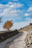 Fermes traditionnelles de pâturage de cuvette rurale à distance de route en Bosnie photos stock