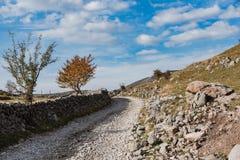 Fermes traditionnelles de pâturage de cuvette rurale à distance de route en Bosnie photo libre de droits