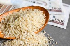 Fermez du riz avec le Nigerian mille notes de naira à l'arrière-plan Photos libres de droits