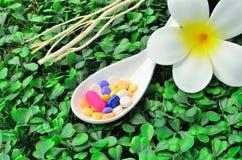Fermez vers le haut des beaucoup le comprimé coloré de médecine sur la cuillère avec la fleur blanche et la branche d'arbre sèche Images libres de droits