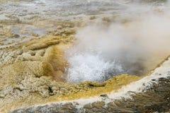 Fermez-vous d'éclater le geyser en bassin supérieur de geyser, Yellowstone N photo libre de droits