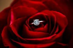 Fermez-vous d'un anneau de mariage remplié dans un simple s'est levé Image libre de droits