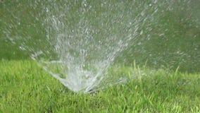 Fermez-vous d'un bec d'un bec pour la pulvérisation de l'eau du système de l'arrosage automatique d'une pelouse avec brillamment  banque de vidéos