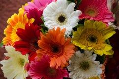 Fermez-vous d'un bouquet des fleurs photographie stock libre de droits