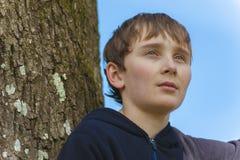 Fermez-vous d'un jeune garçon dans un arbre image stock