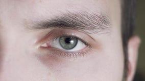 Fermez-vous d'un oeil gris masculin Un indépendant fatigué clignote, l'élève augmente et se contracte banque de vidéos