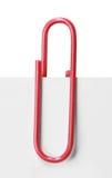 Fermez-vous d'un trombone rouge Images stock
