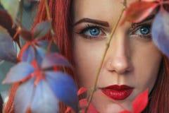 Fermez-vous d'une belle femme principale rouge parmi les feuilles d'automne colorées Photos stock