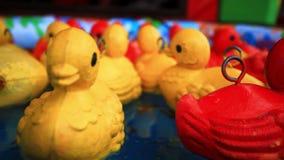 Fermez-vous de flotter les duckies en caoutchouc jaunes HD banque de vidéos