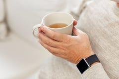 Fermez-vous de l'homme supérieur avec le thé et la montre-bracelet Photos stock