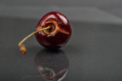 Fermez-vous de l'image du fruit rouge putréfié de cerise sur le noir réfléchi Image libre de droits