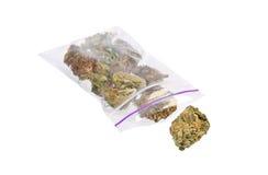 Fermez-vous de l'usine de marijuana Photo stock
