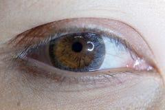 Fermez-vous de la belle lentille de contact visuel de femme image stock