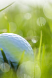 Fermez-vous de la boule de golf sur l'herbe avec le bokeh Photographie stock libre de droits