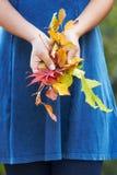 Fermez-vous de la femme tenant Autumn Leaves Image libre de droits