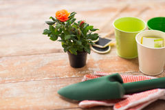 Fermez-vous de la fleur et des outils de jardin roses sur la table Photo stock