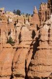 Fermez-vous de la formation de porte-malheur chez Bryce Canyon National Park en Utah Etats-Unis Images stock