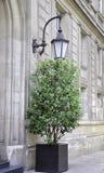 Fermez-vous de la lampe et de la fleur dehors à Paris Photographie stock