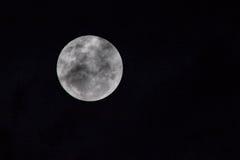 Fermez-vous de la lune Image libre de droits