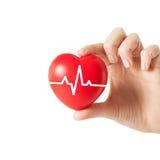 Fermez-vous de la main avec le cardiogramme sur le coeur rouge Image stock