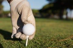 Fermez-vous de la main de joueurs de golf plaçant la boule sur la pièce en t Image libre de droits