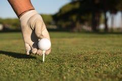 Fermez-vous de la main de joueurs de golf plaçant la boule sur la pièce en t Photographie stock libre de droits