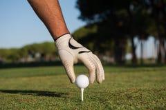 Fermez-vous de la main de joueurs de golf plaçant la boule sur la pièce en t Photographie stock