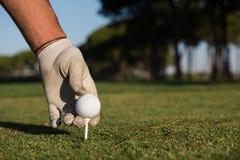 Fermez-vous de la main de joueurs de golf plaçant la boule sur la pièce en t Image stock