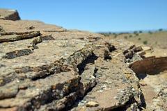 Fermez-vous de la pierre posée couverte par lichen Images stock