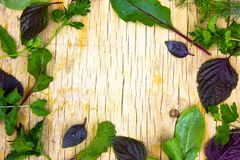 Fermez-vous de la pile des cerises jaunes mûres avec des tiges Grande collection de cerises jaunes fraîches Fond mûr de cerises Image libre de droits