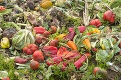 Fermez-vous de la pile végétale de compost dans un domaine de ferme pour compléter le niveau de la terre avec des éléments nutriti images stock