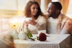 Fermez-vous de la rose merveilleuse étant gardée sur la table Photo libre de droits