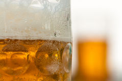 Fermez-vous de la tasse de bière horizontale Images stock