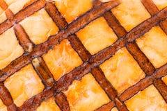 Fermez-vous de la texture saumonée grillée Images stock