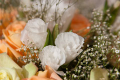 Fermez-vous de Lacy Flowers blanc Photo libre de droits