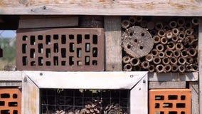 Fermez-vous de quelques sections d'un hôtel d'insecte dans 4k banque de vidéos