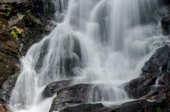 Fermez-vous des automnes d'Amicalola Photographie stock libre de droits