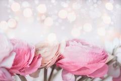 Fermez-vous des belles fleurs en pastel avec la lumière de bokeh Carte de voeux de fête Photographie stock