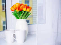 Fermez-vous des belles tulipes dans le vase et des deux tasses sur une fenêtre SI Image libre de droits