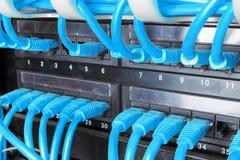 Fermez-vous des câbles bleus de réseau reliés au tableau de connexions Image libre de droits