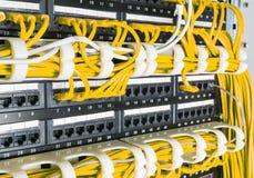 Fermez-vous des câbles jaunes de réseau reliés au commutateur Photo libre de droits
