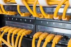 Fermez-vous des câbles jaunes de réseau reliés au commutateur Image stock